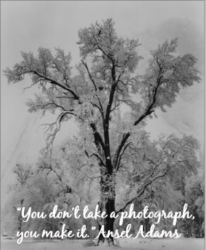 Quotes by Ansel Adams