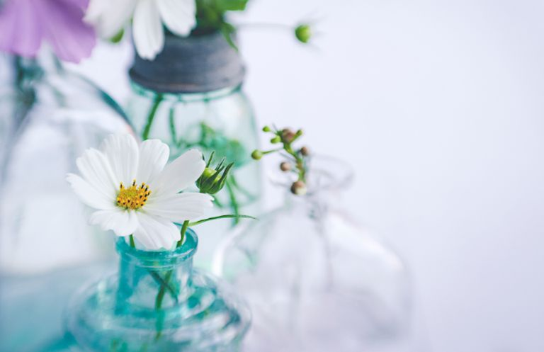 white flower in blue jar